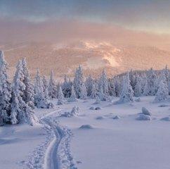 Aube en hiver en Carélie