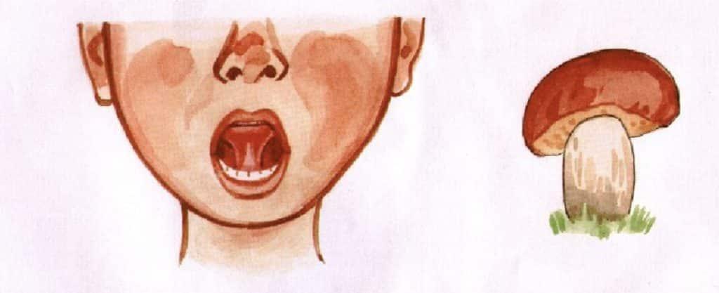 Conseil pour rouler les R en russe : mettre sa langue en forme de champignon